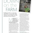 Paddington Farm Feature